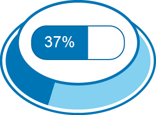 Disease burden 37%